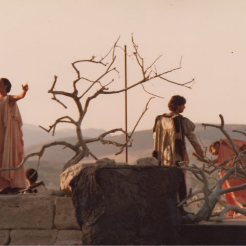 Segesta, 1983